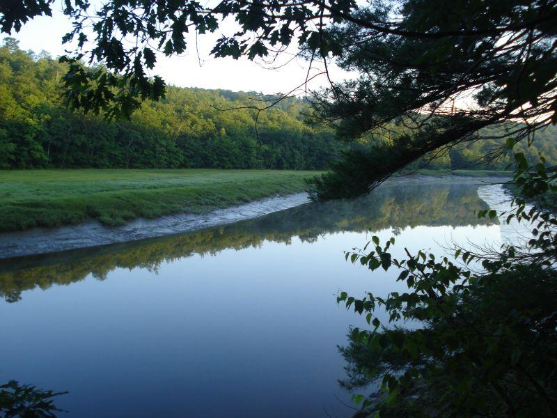 20090706.marsh river1